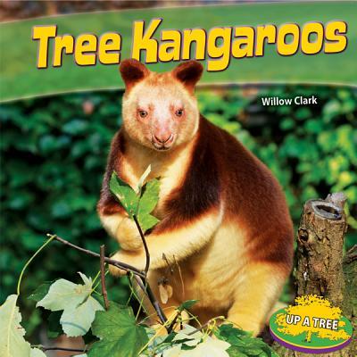 Tree Kangaroos By Clark, Willow