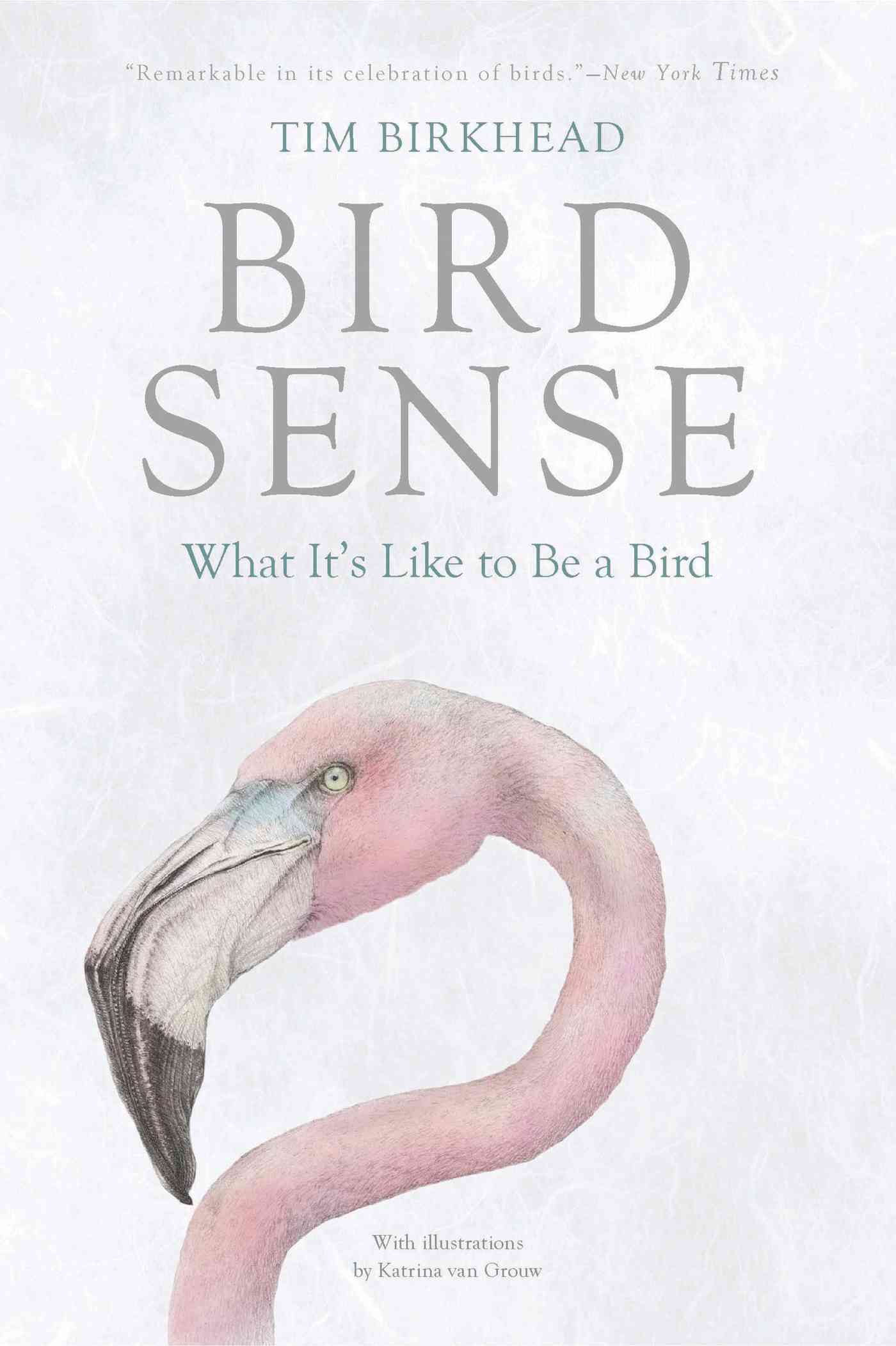 Bird Sense By Birkhead, Tim